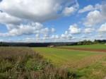 Landschaft bei Liebelsberg